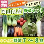 野菜セットSサイズ