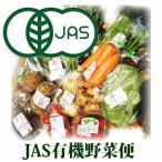 有機栽培 野菜セット便 安全安心栽培 大 10〜12品目 安全 JAS有機栽培