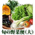 こだわり 野菜セット 便 旬の野菜便大 9〜13品目 詰合せ便 特別栽培