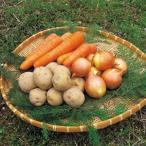 JAS 有機栽培 じゃがいも にんじん たまねぎ 栽培3種セット各1kg クール便でお届け