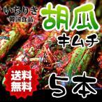 クール便 送料無料 いちりき食品 胡瓜キムチ5本(赤) 韓国 焼き肉 食材 おかず 胡瓜 きゅうり キュウリ キムチ 自家製キムチ 料理 家庭料理