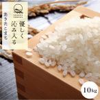秋田県産あきたこまち 10kg (精米後9kg) 送料無料 選べる精米(玄米/胚芽米/白米/無洗米) 令和2年産 真空パック 農家直送 お米