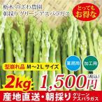 蘆筍 - 栃木県産アスパラガス 型崩れ品 M〜2Lサイズ 2kg