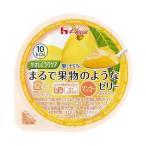 送料無料 【2ケースセット】ハウス食品 やさしくラクケア まるで果物のようなゼリー マンゴー 60g×48(12×4)個入×(2ケース)