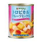 送料無料 【2ケースセット】カンピー トロピカルフルーツミックス 425g缶×24個入×(2ケース)