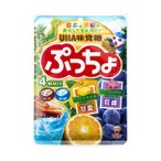 送料無料 UHA味覚糖 ぷっちょ袋 4種アソート 93g×6袋入