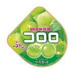 【送料無料】UHA味覚糖 コロロ マスカット 48g×6袋入
