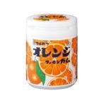 送料無料 【2ケースセット】丸川製菓 オレンジマーブルガムボトル 130g×6個入×(2ケース)