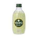 送料無料 【2ケースセット】友桝飲料 マスクメロンサイダー 300ml瓶×24本入×(2ケース)