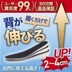 シークレット インソール かかと 衝撃吸収 身長アップ 靴 中敷き 低反発