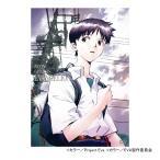 新世紀エヴァンゲリオン DVD STANDARD EDITION Vol.1(日本テレビ 通販 ポシュレ)
