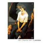 新世紀エヴァンゲリオン DVD STANDARD EDITION Vol.7(日本テレビ 通販 ポシュレ)
