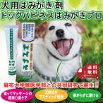 犬用口腔ケアジェルドッグハピネス ペット用品 犬 犬用品 デンタルケア用品 歯磨き粉 歯磨きジェル 口臭ケア ジェル 口臭対策