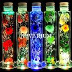 ハーバリウム お中元 ギフト セット ジュエリー ハーバリウム 光る プリザーブドフラワー ギフトランキング 誕生日 プレゼント 女性 花 LEDコースター付き