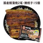 蒲焼・鯵餃子の2種類 蒲焼2尾・あじぎょん15個 送料無料 国産うなぎ 手焼き 冷凍クール便
