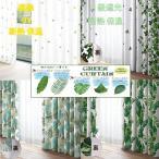 カーテン おしゃれ 遮光 2級 2枚組 風水 グリーンシリーズ 巾100cm 2枚組 送料無料