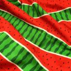 すいかボーダー ダブルガーゼ生地 ( Wガーゼ シャツ 生地 赤ちゃん ワンピース パジャマ おくるみ スタイ マスク ) 50cm単位