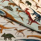 恐竜博物館 ツイル生地 ( ハンドメイド dinosaur バッグ インテリア エプロン ポーチ 学校 入園入学  ) 50cm単位