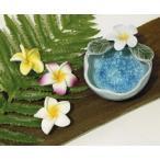 ハワイアン雑貨 小物入れ お香立て インセンストレイ 灰皿 アジアン雑貨 プルメリアミニトレイ