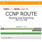 「目指せ!!一発合格」CCNP ROUTE(300-101J)
