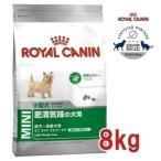 肥満気味の小型犬(成犬時体重1〜10kg)成犬〜高齢犬用