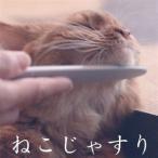 ねこじゃすり ワタオカ 猫用 ブラシ コーム 毛づくろい 猫ブラシ コミュニケーションブラシ おもちゃ