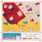 ターチャン ブランケット 猫 マフラーターチャンブランケット-S フランネル ZW-379-15