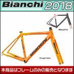 ビアンキ 2018年モデル FENICE PRO FRAME SET(フェニーチェ プロ フレームセット) ロードフレーム Bianchi