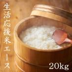 米 20kg 白米 ブレンド米 生活応援米 エース 東北産 5kg×4袋