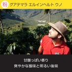 レギュラーコーヒー 小川珈琲 スペシャルティグレード グアテマラ エルインヘルト ウノ(粉)150g
