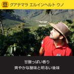 レギュラーコーヒー 小川珈琲 スペシャルティグレード グアテマラ エルインヘルト ウノ(豆)150g