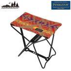 Adirondack(アディロンダック) AD PWM マイクロチェア GD Camel 89001058 イス レジャーシート テーブル チェア コンパクトチェア アウトドアギア