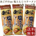 新潟ラーメン あごすけ監修 塩とんこつラーメン 2食入×3袋 メール便 送料無料 ポイント消化