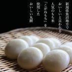 魚沼こがね丸餅 5袋 新潟県魚沼産こがねもち米使用 丸餅 極上の餅 送料無料