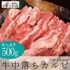 牛肉 焼肉 バーベキュー 中落ちカルビ BBQ リブフィンガー 500g