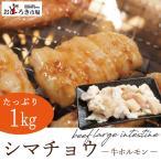 焼肉 バーベキュー BBQ もつ鍋 てっちゃん シマ腸 メガ盛り1kg 真空パック 200g×5パック