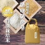令和元年産 ヒノヒカリ 5kg×1袋 / お取り寄せグルメ 福岡県 特別栽培米 たごもり農園