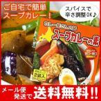 「メール便送料無料」カレー屋さんの味 スープカレーの素 濃縮スープ2袋入 Curry World カレーワールド(代引不可・着日指定不可・同梱不可)