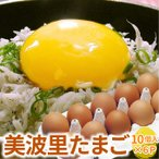 自然農法「ぜひとも生で味わって頂きたい美味しさ」美波里のたまご 10個×6パック 北海道根室産 の びばりの卵(玉子)合計60個(送料無料)