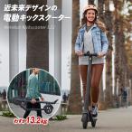 Ninebot Kickscooter E22 電動キックスクーター 電動 キックボード スクーター スケボー、スケートボード好きな方 電動式 車のトランクへの積み込み 軽量