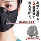 プロテクションマスク 逆止弁バルブ付き 80枚限定入荷 マスク N95相当 ウイルス対策 花粉対策 5層構造 フィルター 花粉 ウイルス フィルター3枚付属