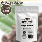 昆虫食食用JungleTrialMix311g(ジャングルトライアルミックス3(カブトムシ)11g) 閲覧注意良質な脂質が含まれた高栄養食高蛋白で低糖質豊富なアミノ酸