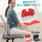 ◆座るだけで、正しい姿勢をサポート◆カーブルチェアーワイド◆
