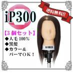 【送料無料/3個セット価格!】アサヒ iP300 カットウィッグ 3個セット[j16781]