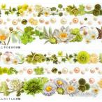 yano design マイクロミシン目入りマスキングテープ / シリーズフラワーライン White&Green YD-MK-055 ラウンドトップ