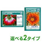 ジャポニカ学習帳 B5 算数 さんすう 2タイプ 12×7/12×17 方眼 1冊 ショウワノート EC-JL-sansu