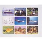 言語訓練写真カードセットI生物と乗物