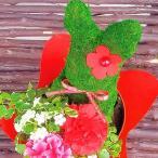 トピアリー ミニ観葉 誕生日プレゼント うさぎ くま 「フラワーメッセンジャー」