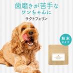 ラクトフェリン 犬 サプリ サプリメント ドッグフード と一緒に 動物病院 採用 小型犬  無香料 無着色 国内生産