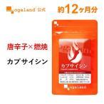 【新春1年分セール】燃焼ダイエット サプリ カプサイシン ダイエットサポート 健康食品 サプリメント 約12ヶ月分